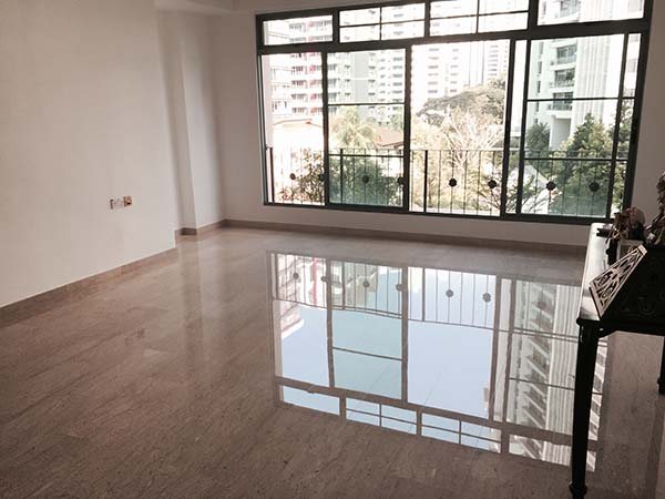 Staging Property to Sell - D9 Condo - Near Great World City2
