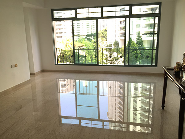 Staging Property to Sell - District 9 Condo - Call Alvin Lim Agent to sell 1