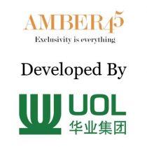 Amber-45-developer-team_1
