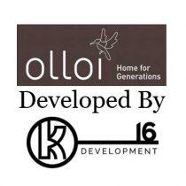olloi-developer-team_1