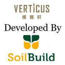 verticus-developer-team_2