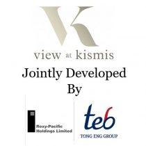view-at-kismis-developer-team_2